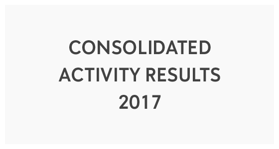 Consolidated Activity Results 2017 (PDF)